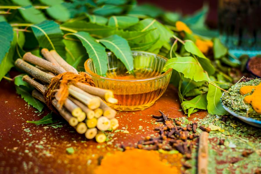 High demand for medicinal plants in India