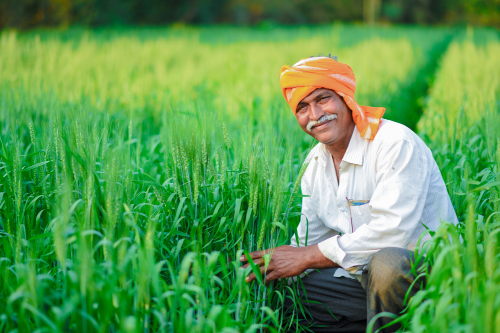 India's Promising New Agricultural Policy