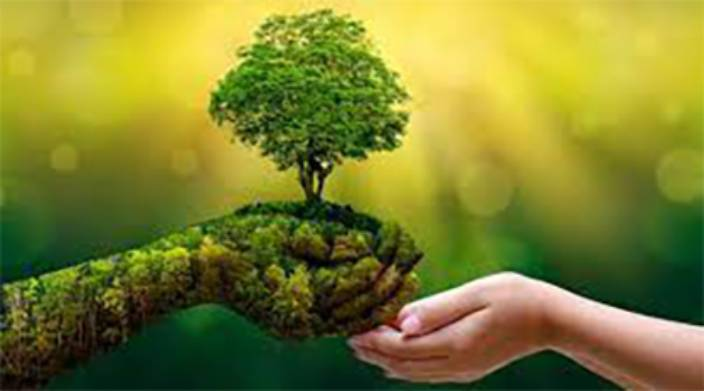 Green transformation of the Indian economy gains momentum with EIB's investments