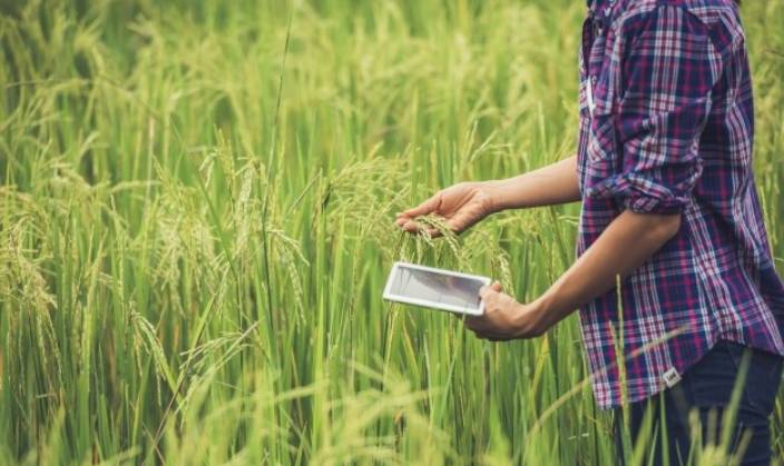 Digital Agriculture - The Future of Indian Agriculture